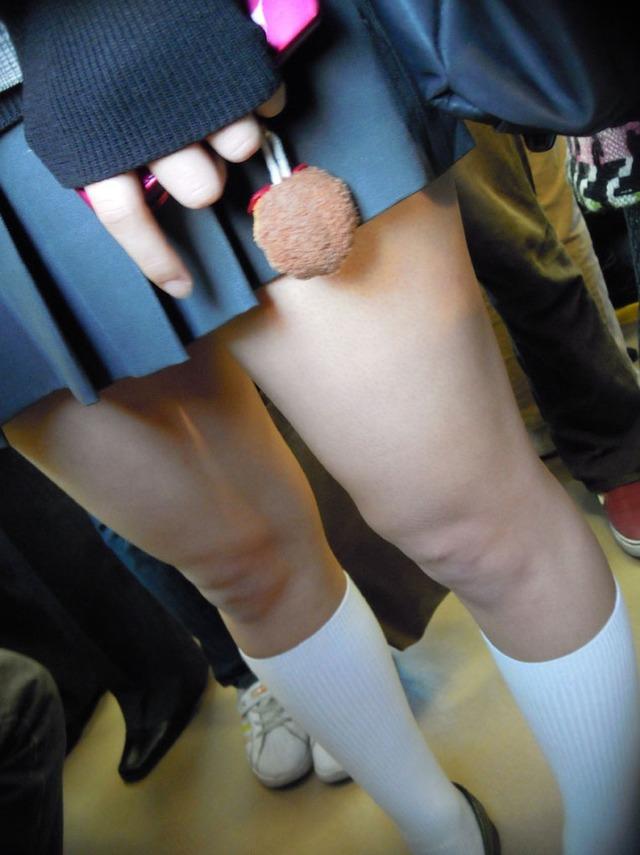 見ているだけで我慢汁が…鮮度抜群すぎる現役10代小娘の下半身生足エロ画像wwwwwww